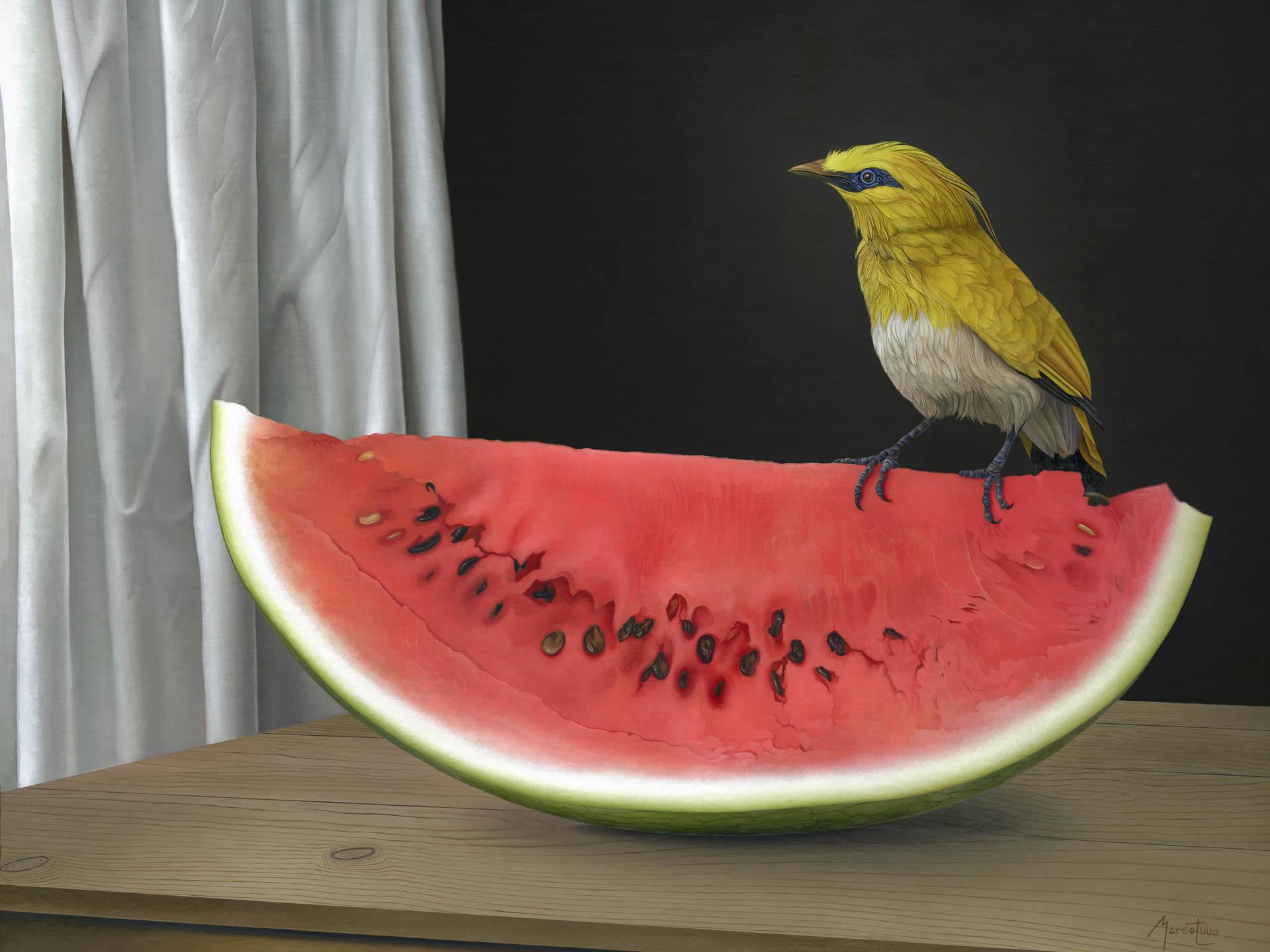Marco-Tulio-Bird-and-Watermelon-Online-Art-Galleries