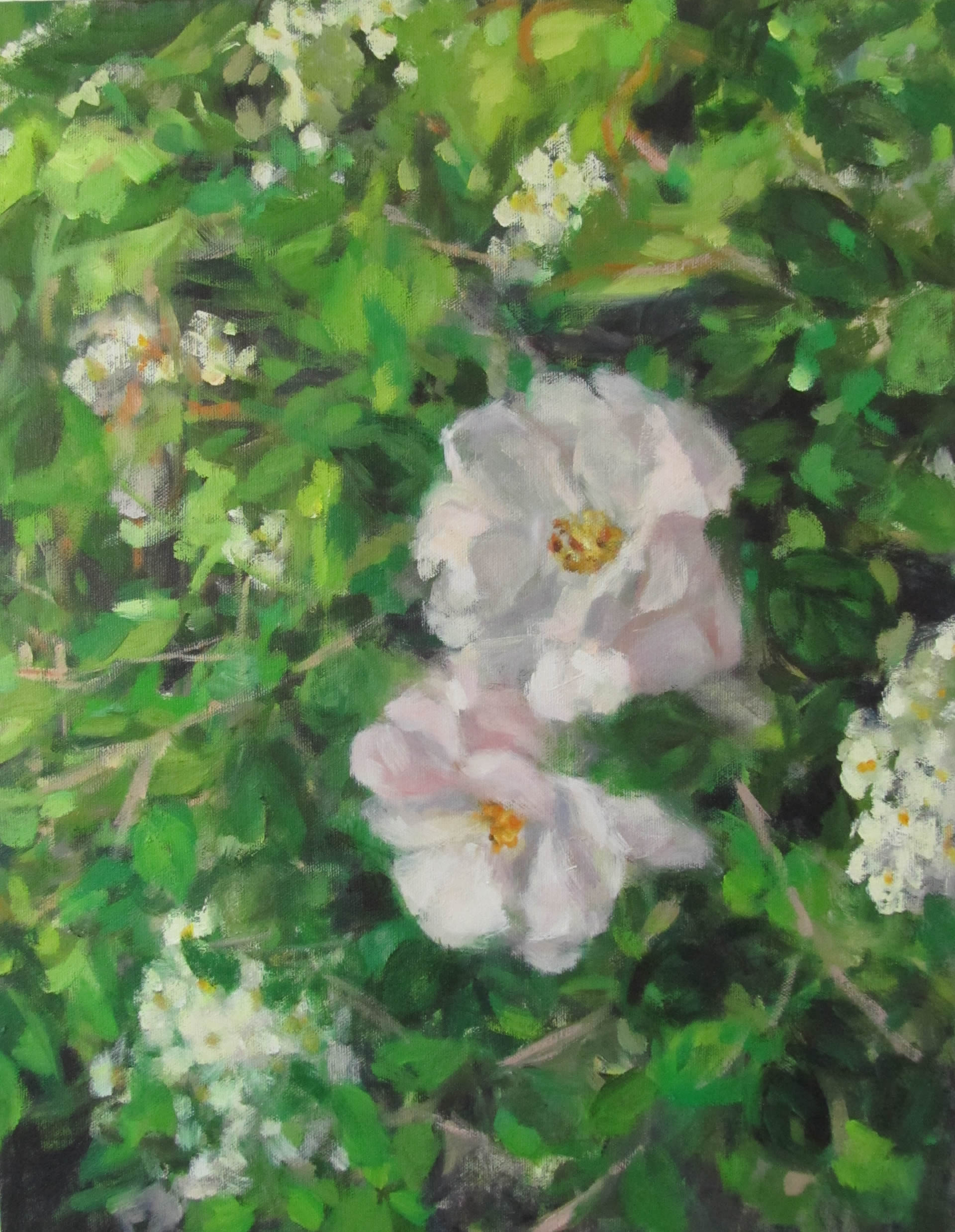 Eri-Ishii-Rose-Bush-In-Rain-18x14-Online-Art-Galleries