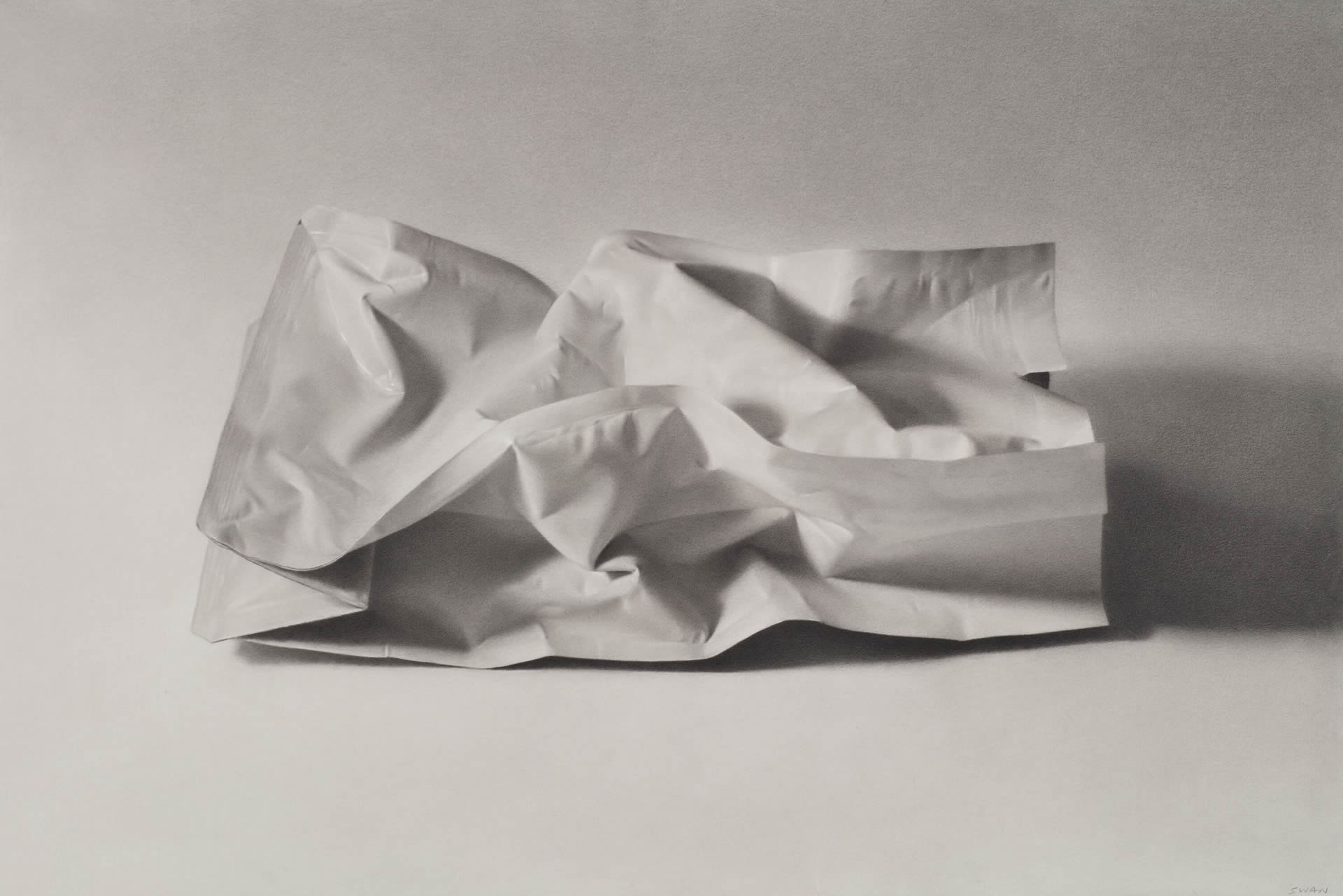 Anselmo-Swan-Coffee-Package-No3-15x22-Online-Art-Galleries