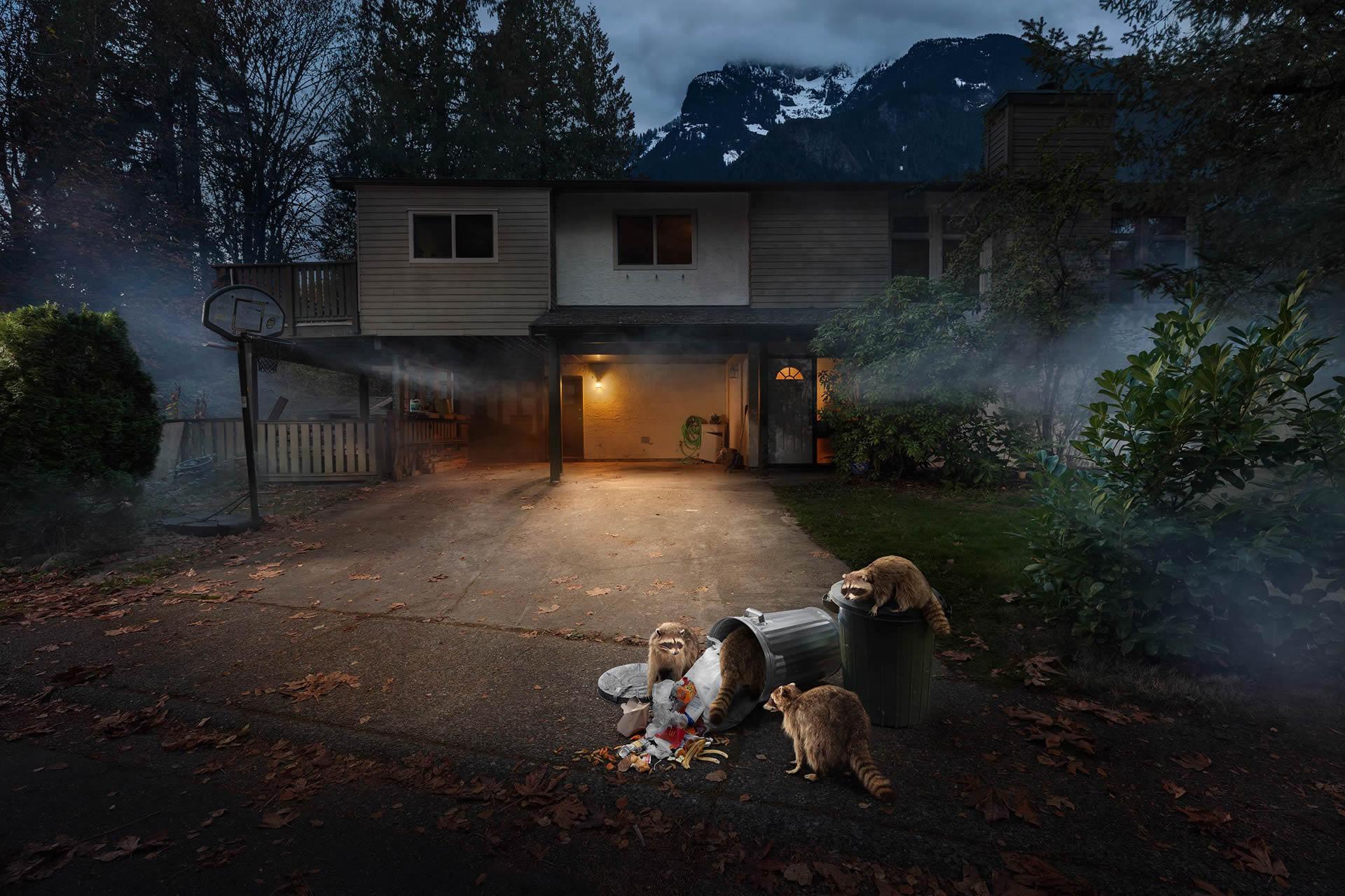 Kevin-Lanthier-Trash-Pandas-Online-Art-Galleries