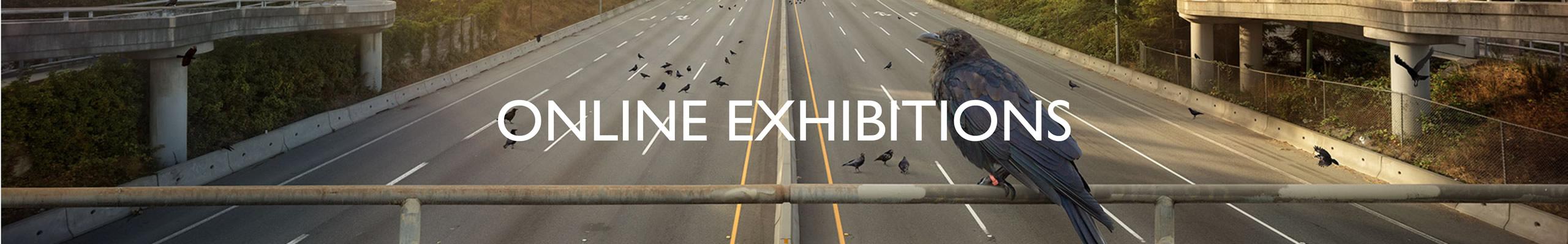 Exhibitions Online Art Galleries