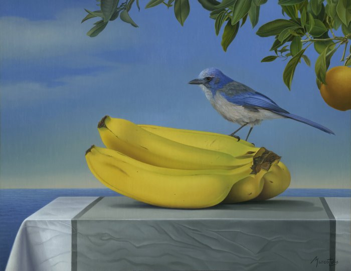Marco-Tulio-Jay-And-Banana-14x18-oil-on-canvas-3500-painting-Online-Art-Galleries